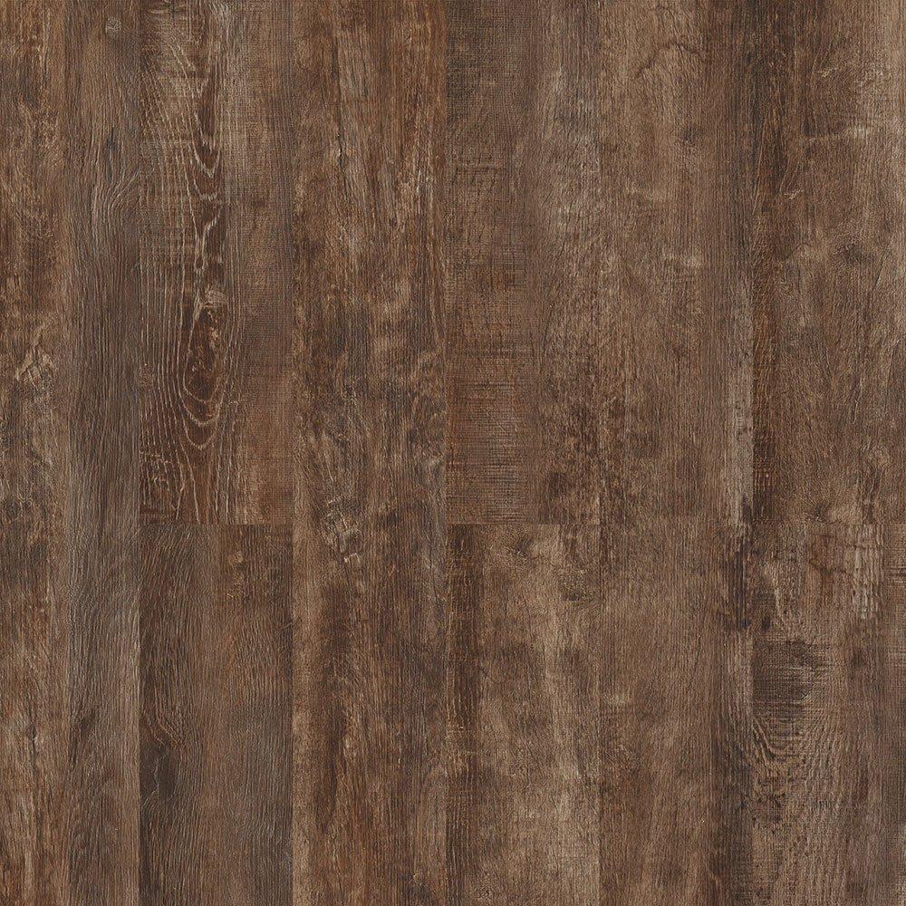 Corkwood Loblolly