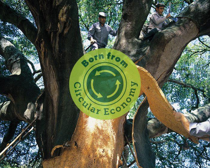 Flooring for a Circular Economy
