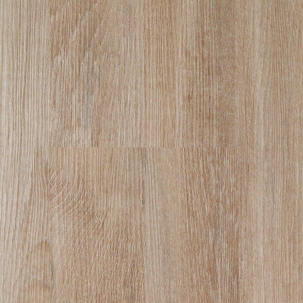 Corkwood Sapote